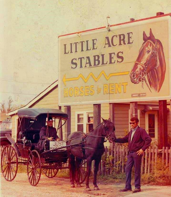 little acres stables norridge
