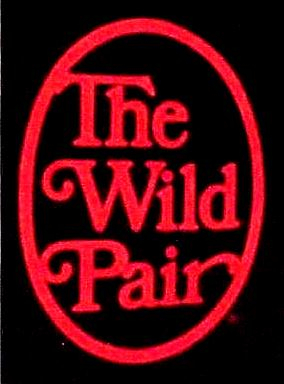 the wild pair shoe shoes store
